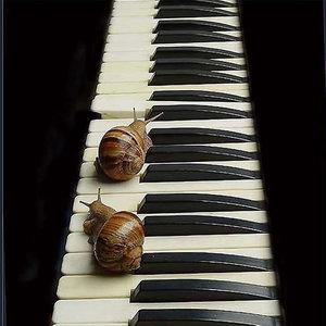 雪绒花 (钢琴曲)