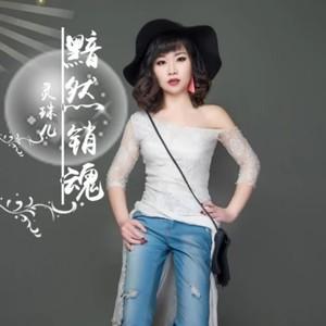 飞蛾扑火(热度:39)由妞妞翻唱,原唱歌手灵珠儿
