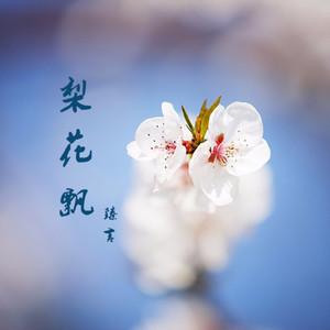梨花飘(热度:59)由陈雪芬翻唱,原唱歌手臻言