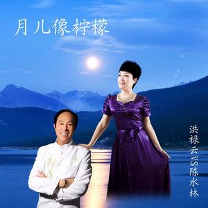 知音由中国口哨~Sky演唱(原唱:洪禄云)