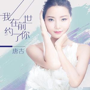 我在前世约了你(热度:345)由胡雪钰翻唱,原唱歌手唐古