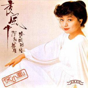 漫漫前路原唱是徐小凤,由XD纯真翻唱(播放:624)