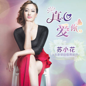 真心爱你(热度:98)由蓝天 彩虹平妹翻唱,原唱歌手苏小花