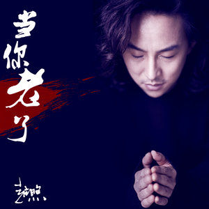 当你老了(热度:113)由平  实翻唱,原唱歌手赵照