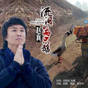 流泪的两只鹅(热度:14)由二爷翻唱,原唱歌手赵真