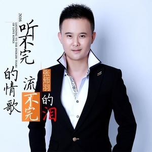听不完的情歌流不完的泪原唱是张师羽,由曹帅Cfg翻唱(播放:13)