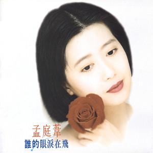 谁的眼泪在飞(热度:417)由晶晶翻唱,原唱歌手孟庭苇