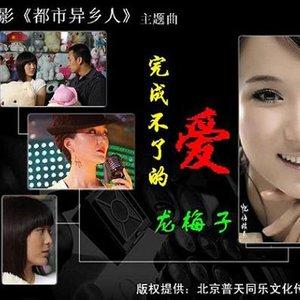 完成不了的爱(热度:138)由小奴家翻唱,原唱歌手龙梅子