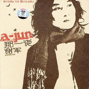 那一夜(热度:560)由红红翻唱,原唱歌手谢军