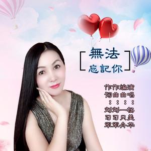 无法忘记你(热度:12)由留心宝(思念)翻唱,原唱歌手杨美华