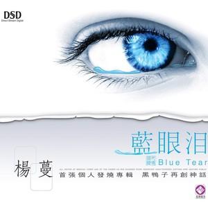 蓝眼泪原唱是杨蔓,由简简单单翻唱(播放:20)