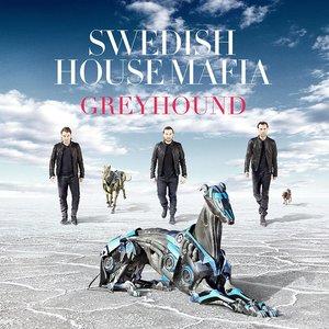 ฟังเพลงอัลบั้ม Greyhound