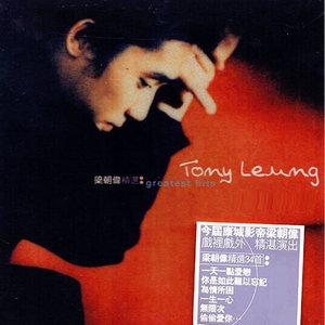 一天一点爱恋(热度:130)由心念翻唱,原唱歌手梁朝伟