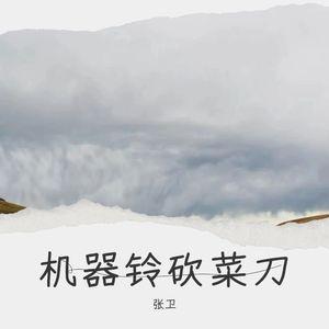 机器铃 砍菜刀(热度:51)由楊承恩翻唱,原唱歌手张卫