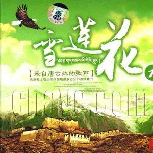 青藏高原(热度:2043)由美丽的雪莲花!翻唱,原唱歌手尼玛泽仁·亚东