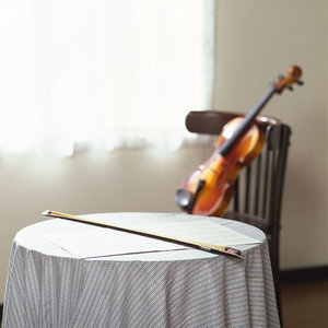 梦里水乡(热度:24)由玫瑰「导师」翻唱,原唱歌手江珊
