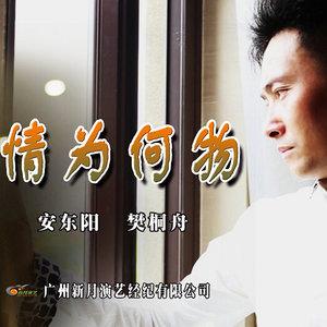 情为何物(热度:99)由欣新翻唱,原唱歌手安东阳/樊桐舟