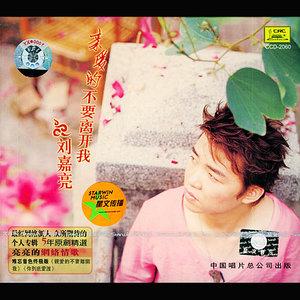 你到底爱谁原唱是刘嘉亮,由多多阿婆翻唱(播放:20)