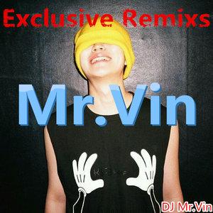 Mr.Vin