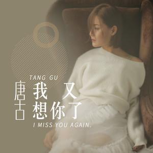 我又想你了(热度:337)由浅笑嫣然翻唱,原唱歌手唐古