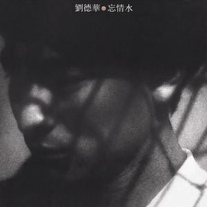 忘情水(热度:19)由阳光仙子翻唱,原唱歌手刘德华