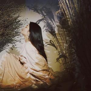 野子(热度:76)由九门金金翻唱,原唱歌手苏运莹