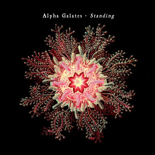 Standing 2007 Alpha Galates