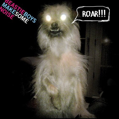 Make Some Noise 2011 Beastie Boys