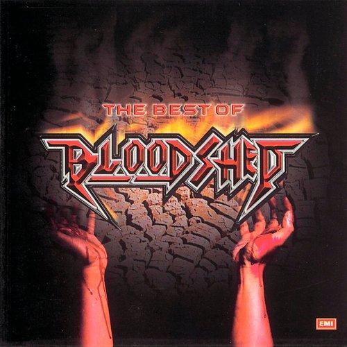 Srikandi Cintaku 2004 Bloodshed