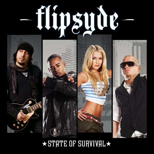 When It Was Good 2009 Flipsyde
