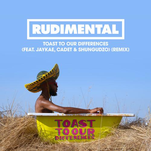 อัลบั้ม Toast to our Differences (feat. Jaykae, Cadet & Shungudzo) [Remix]