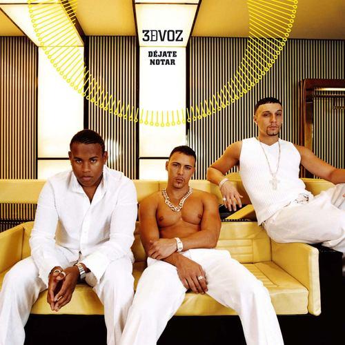 Dejate Notar [Radio Edit] 2004 3DVOZ