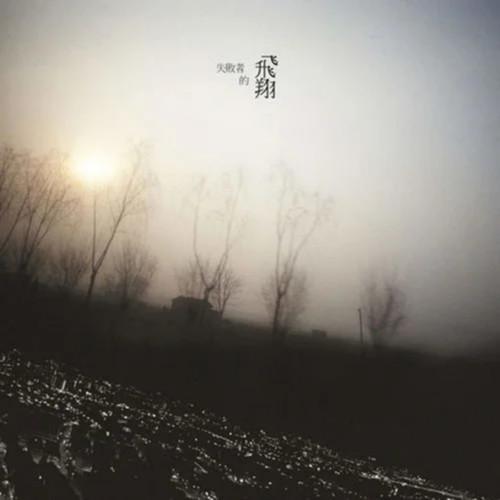失敗者的飛翔 2008 陈绮贞
