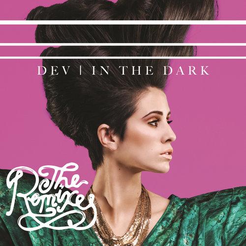 In The Dark 2011 Dev