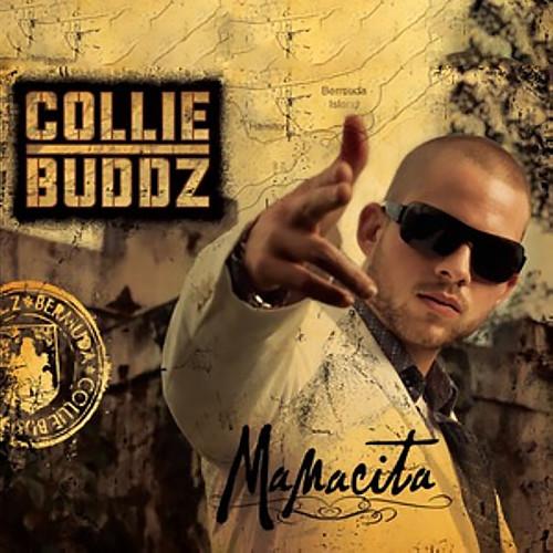 Mamacita 2010 Collie Buddz