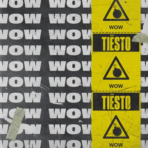 WOW 2018 Tiësto