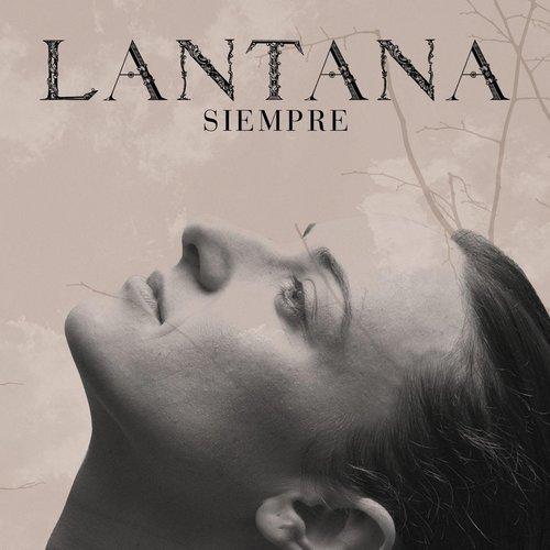 Siempre 2007 Lantana