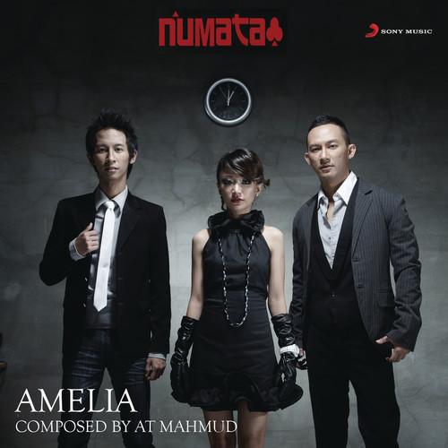 Amelia 2012 NUMATA