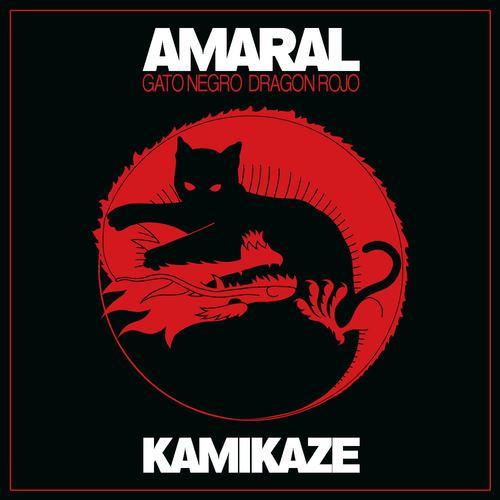 Kamikaze 2008 Amaral