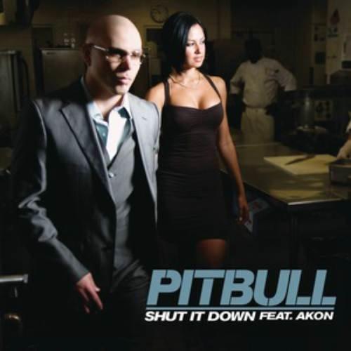 Shut It Down 2009 Pitbull featuring Akon