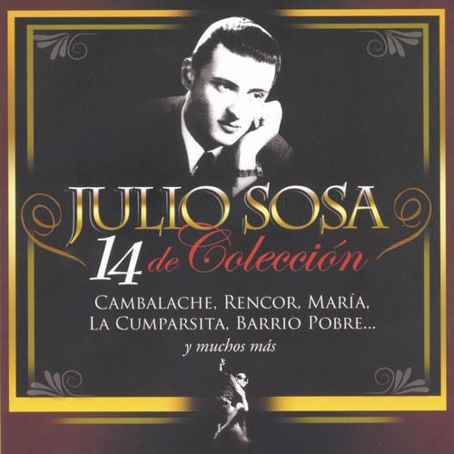 14 de Colección 2010 Julio Sosa