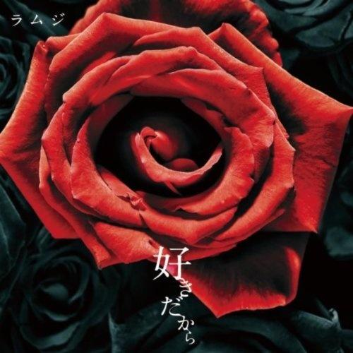 川崎玫瑰花的步骤图解