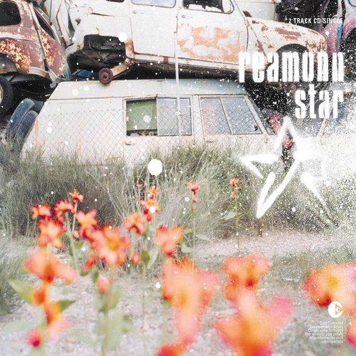 Star 2013 Reamonn