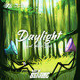 Daylight (feat. Averi Burk)
