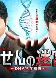 螺旋的迷宫:DNA科学搜查