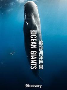 追蹤海洋巨獸